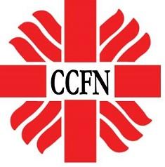 caritasnigeria.org